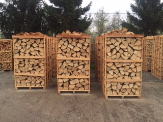 legna-faggio.jpg